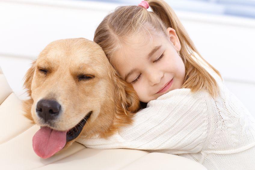 manipulação veterinária cuidado e carinho